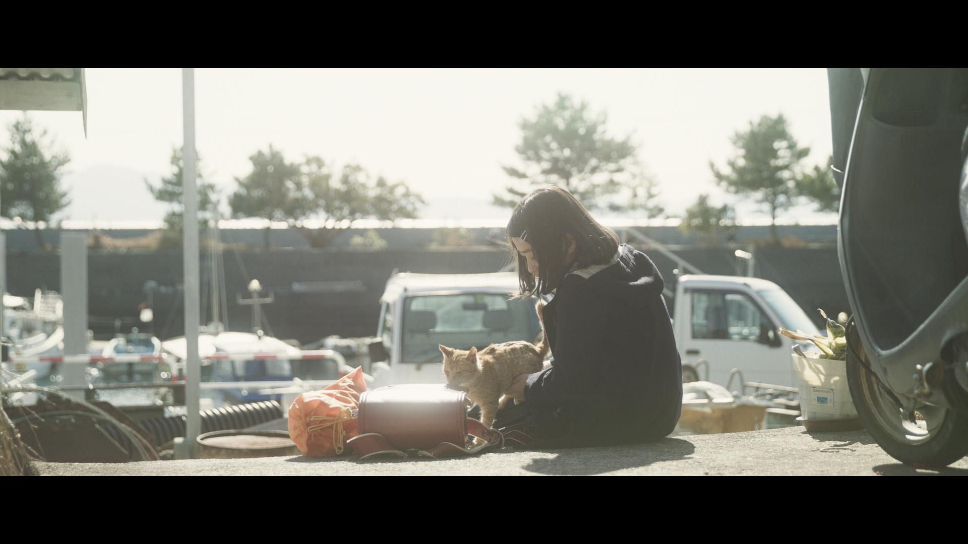 短編映画「島のシーグラス」
